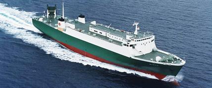 RO/RO貨物船 [5,000D/W]